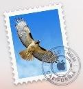 mac_osxmail-0000